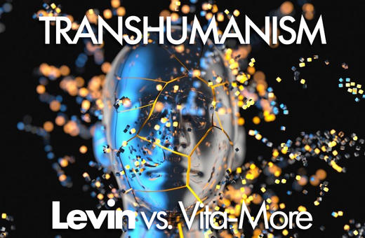 Irrationality of transhumanists with text