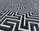 Mazes Of The Mind